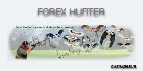 купить советник форекс forex hunter